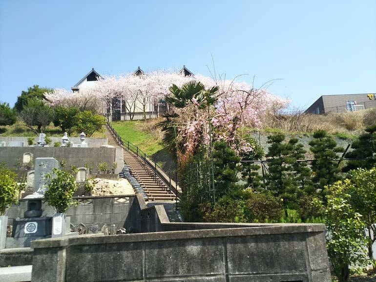 四国中央市営 五社山墓地