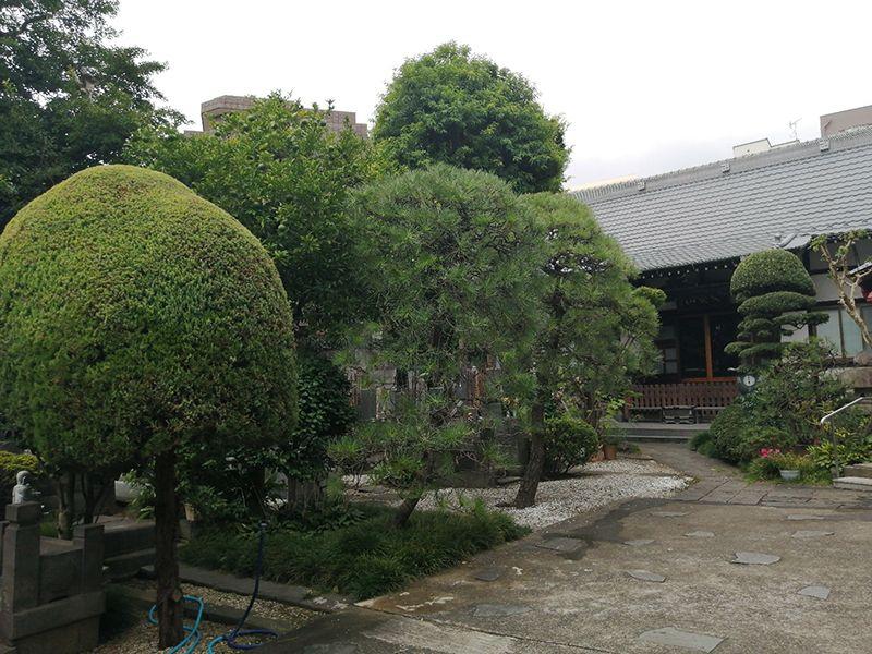 安養山 還国寺