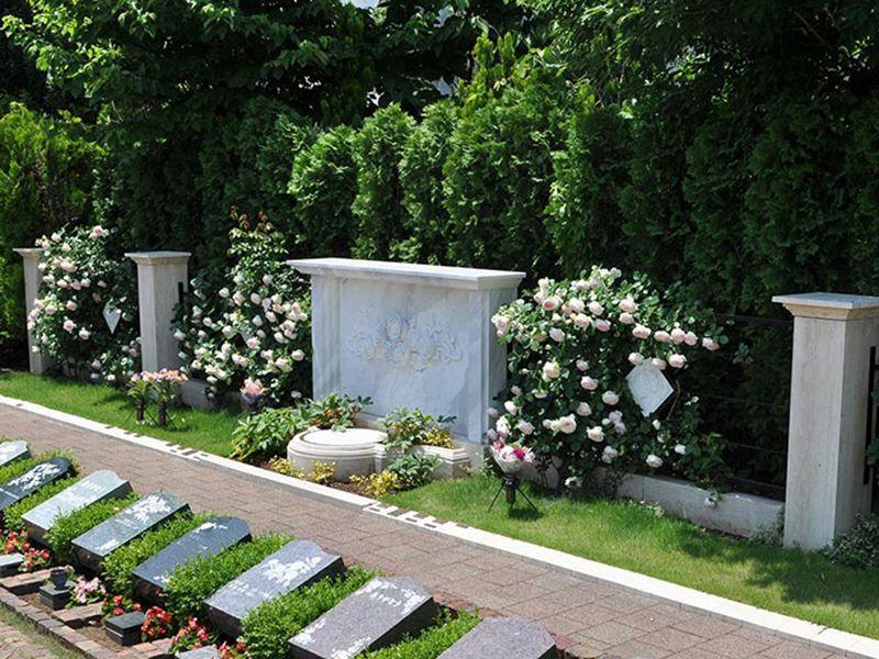 秋津ふれあいパーク バラの樹木葬ダイアナ