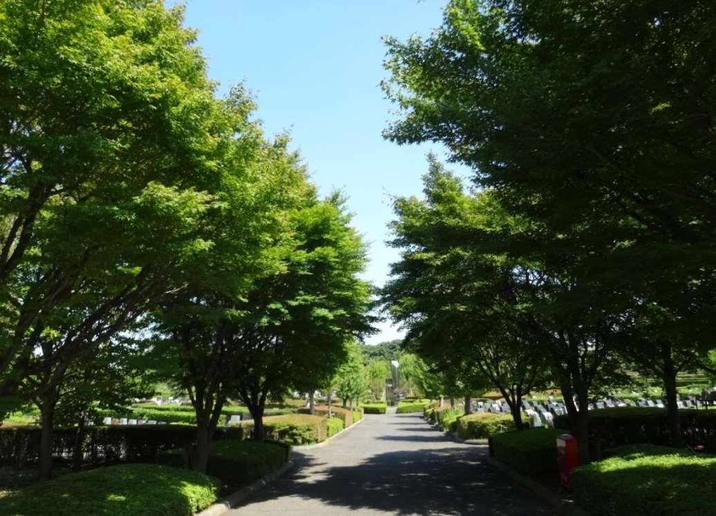 新座市営墓園の園内通路②