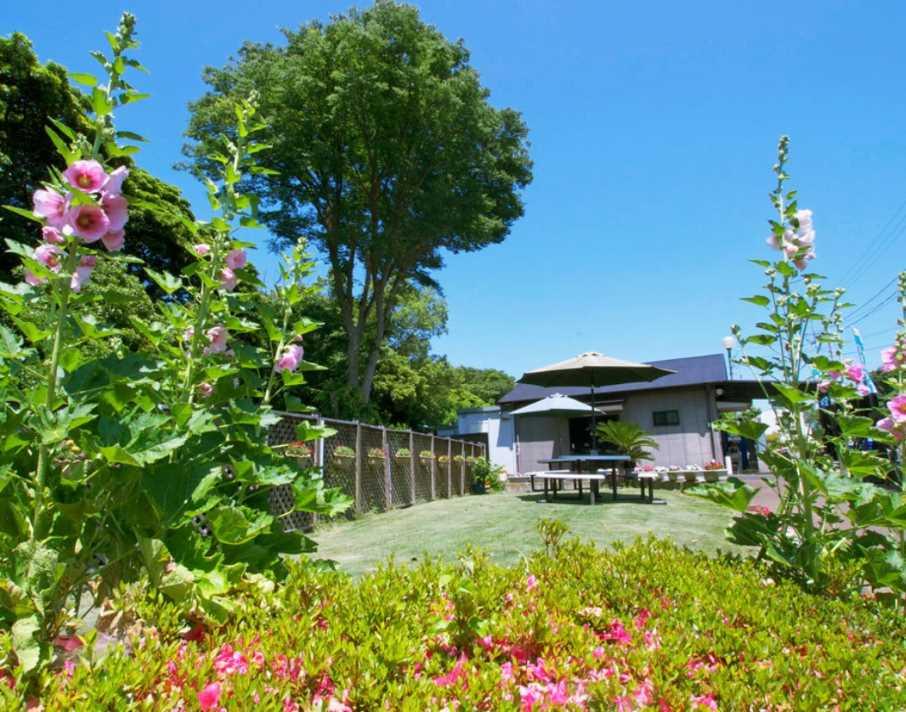 茅ヶ崎霊園 永久の郷 草花に囲まれた癒しの空間