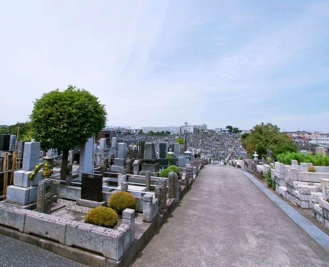 横浜市営 三ツ沢墓地 広大な敷地