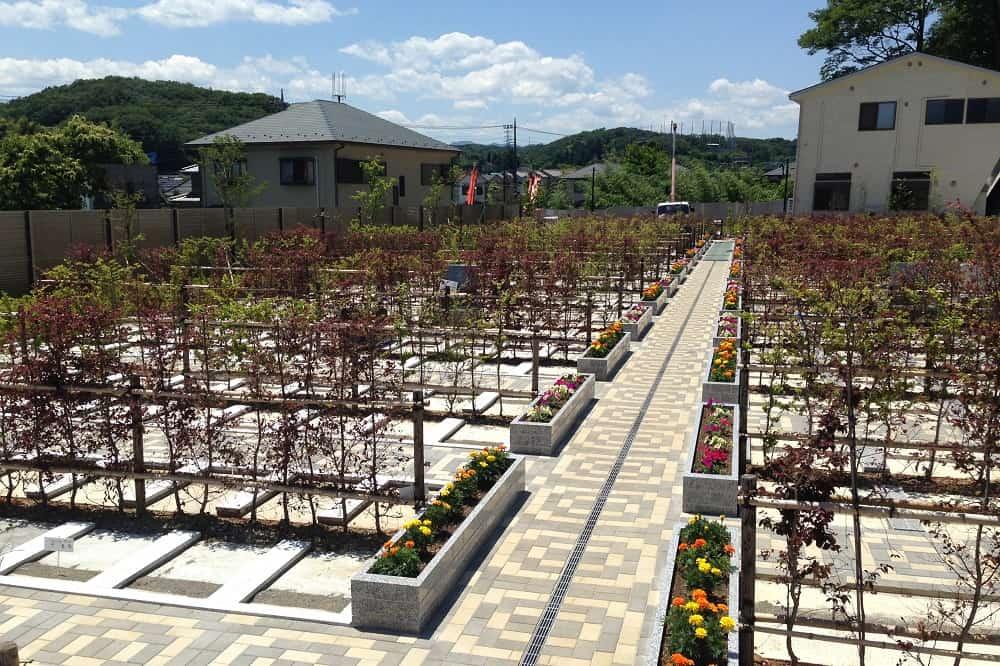 たきやま台墓苑 墓石の背面に生垣が配置された墓域
