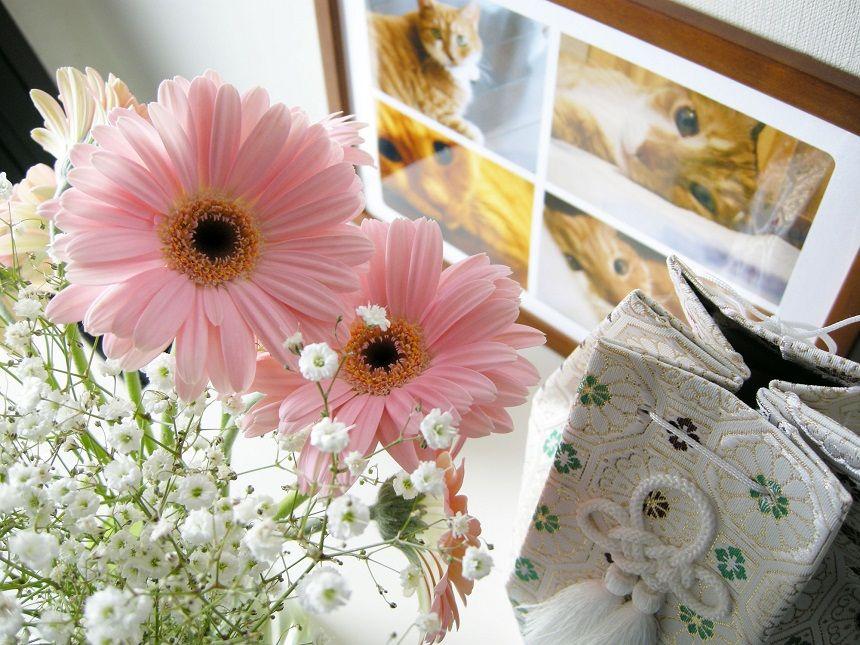 ペットの遺影と花