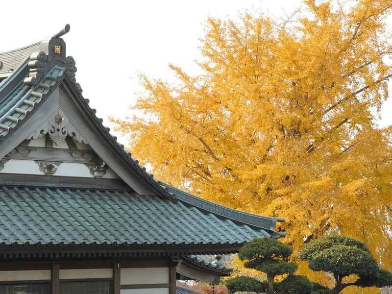 蓮華廟 紅葉が美しい植栽