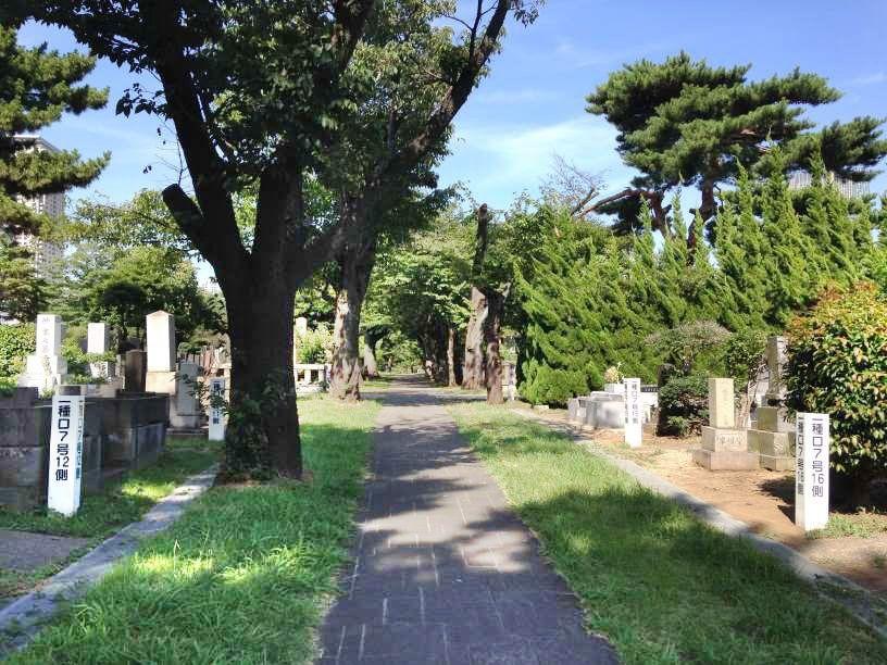 青山霊園7