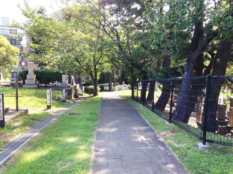 青山霊園8