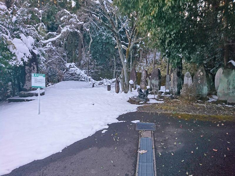 樹木葬霊園 マイメモリーいずみ