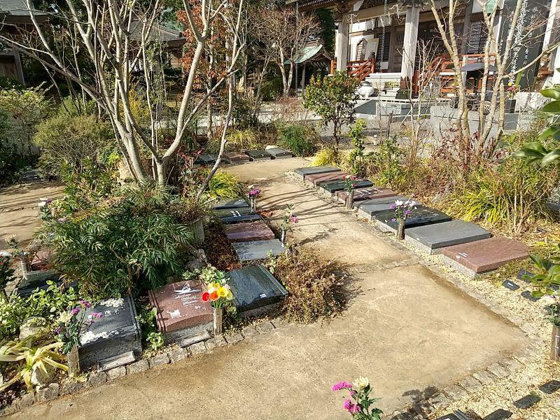 本迹寺 いすみ庭苑