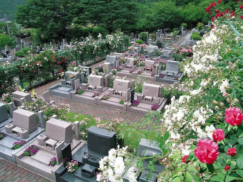 西東京墓苑 季節の花々が咲き誇る霊園風景