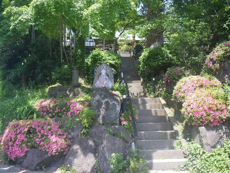 陽林寺 緑が溢れる墓所