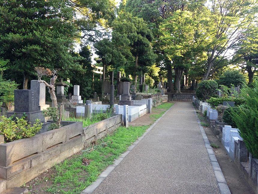 谷中霊園8