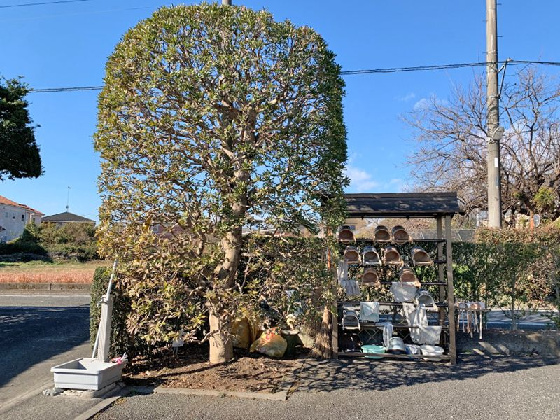 秋川観音墓苑