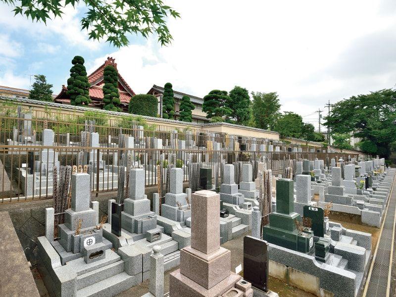 大泉寺墓所 日当たりの良い明るい墓域