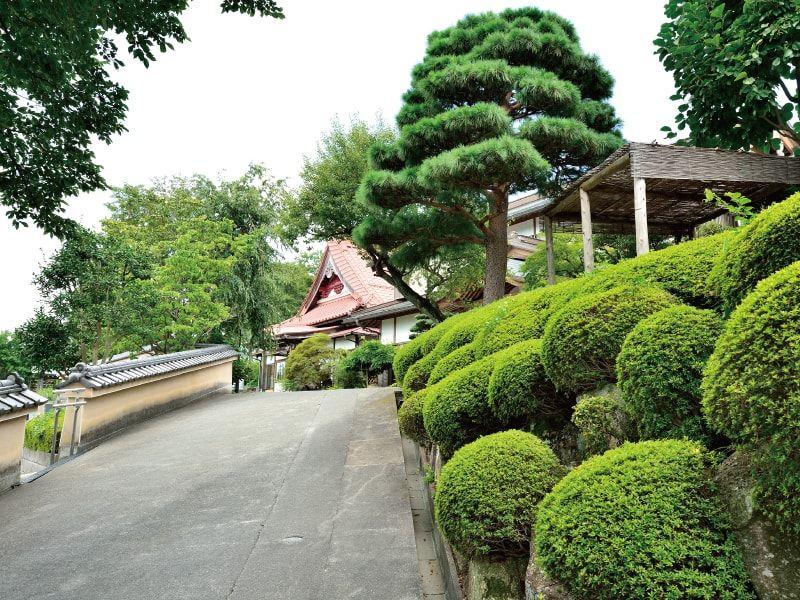 大泉寺墓所 趣のある境内風景