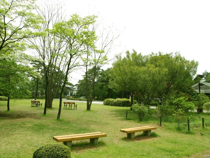 都立 小平霊園 緑に囲まれたベンチ