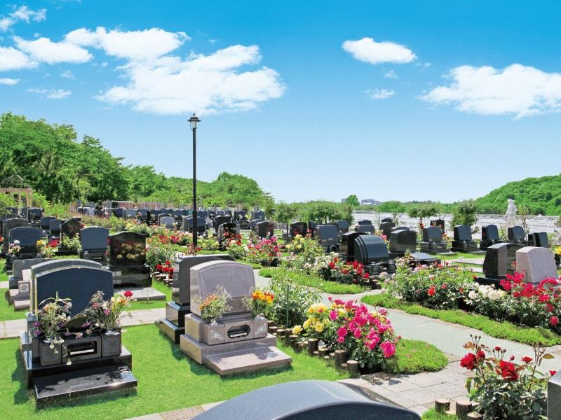 メモリアルパーク花の郷墓苑 厚木宮の里 約250本のバラが咲き乱れる墓域