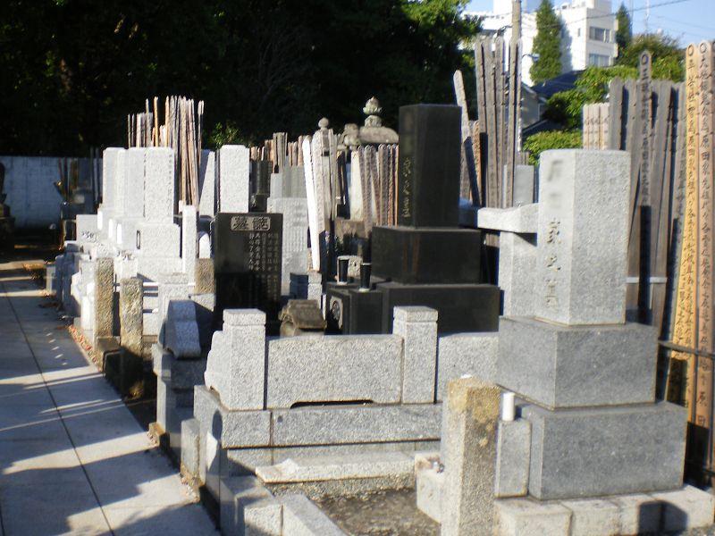 智光院 一般墓地
