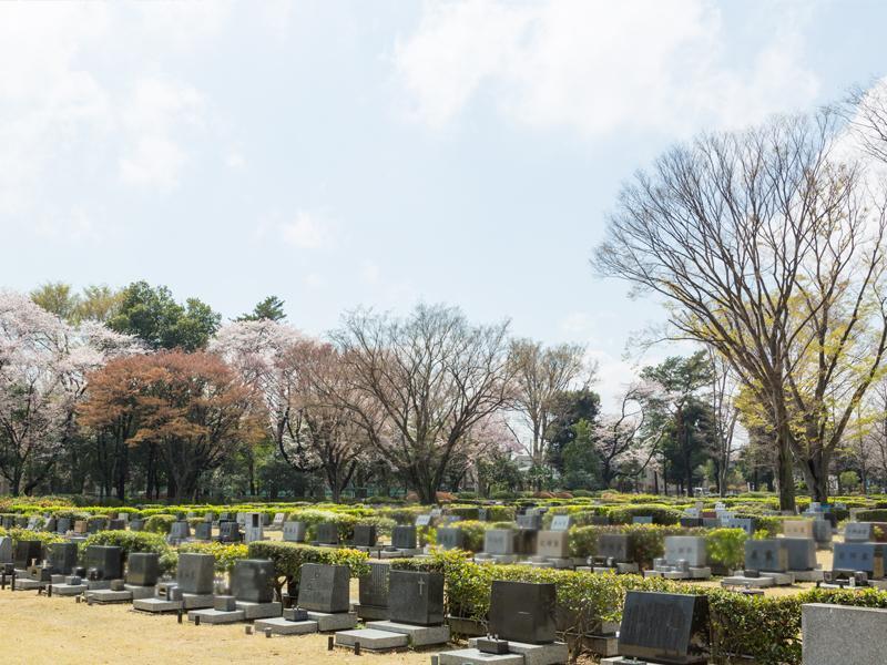 都立 小平霊園 一般墓 芝生埋蔵施設