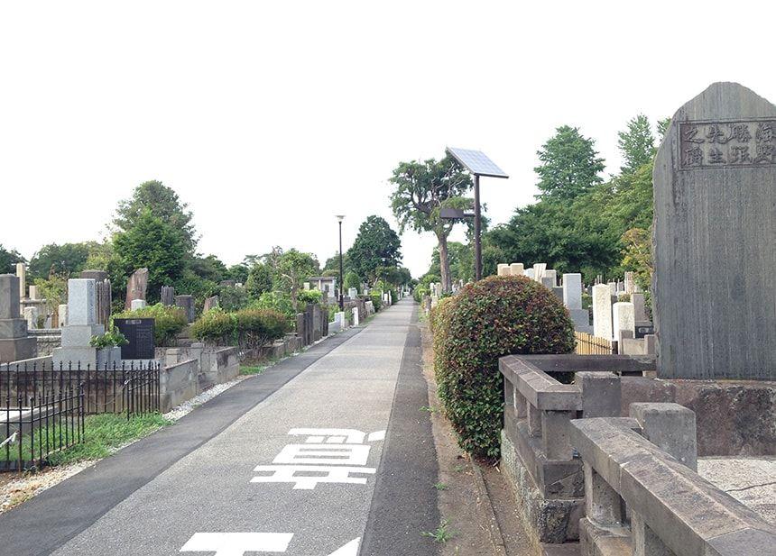 染井霊園11