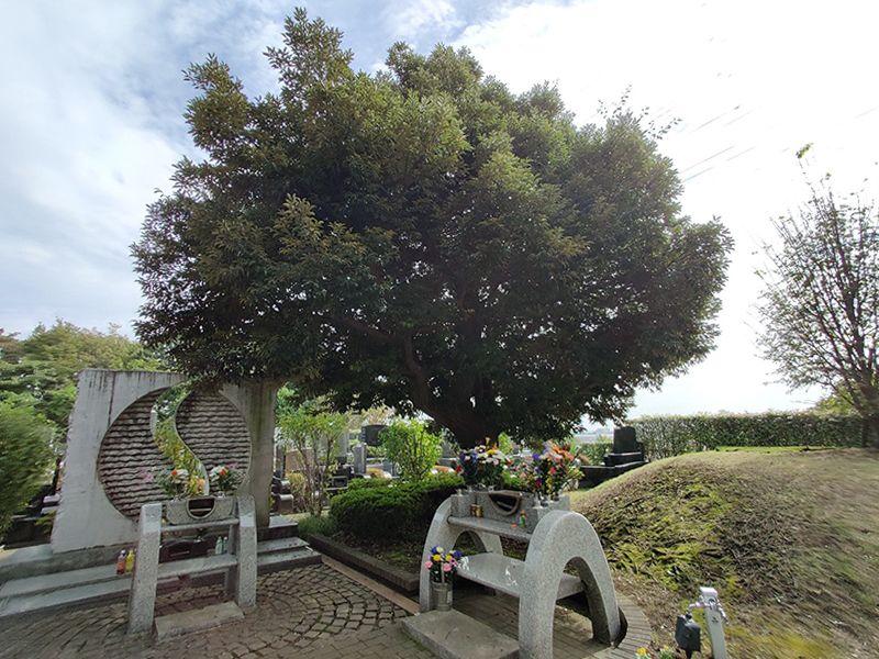 東京多摩境フォーシーズンメモリアル 樹木葬
