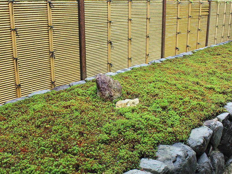 東福寺 荘厳院 樹木葬