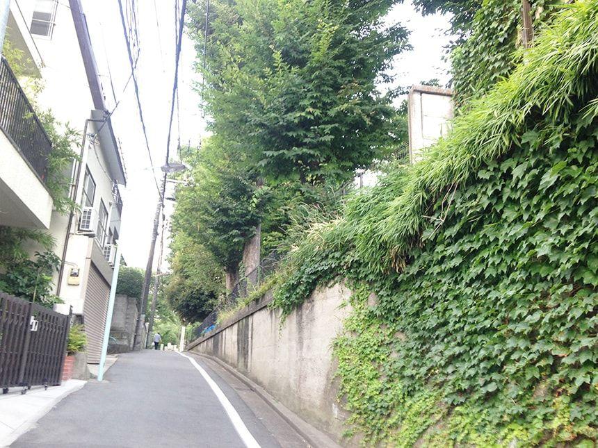 雑司ヶ谷霊園9
