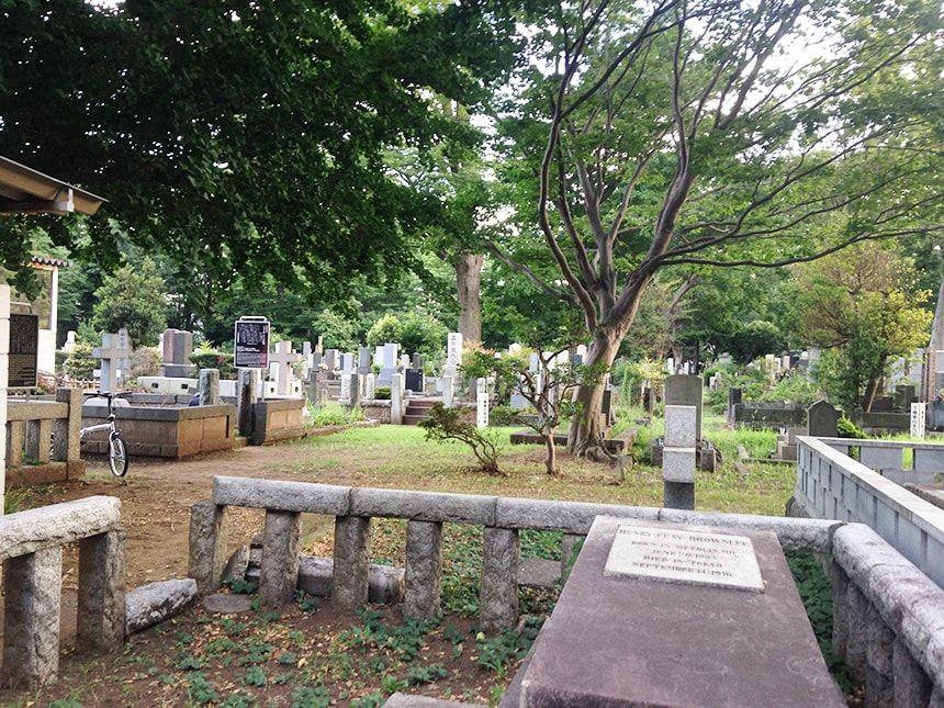 雑司ヶ谷霊園12