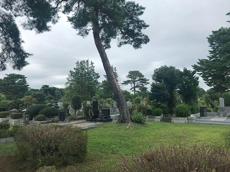 都立 小平霊園(永代供養墓・樹木葬)