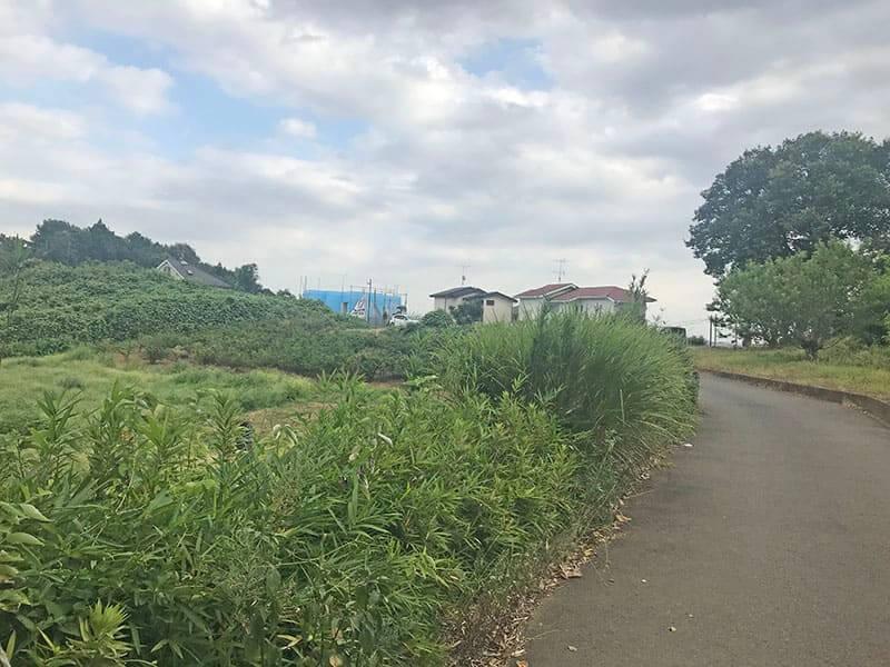 川崎清風霊園までの平坦道