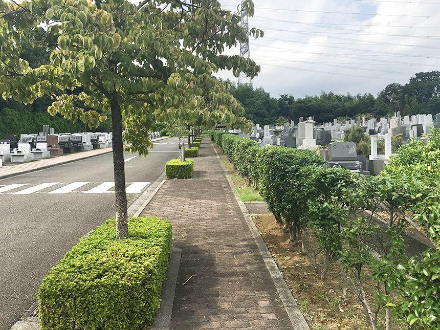 東京多摩霊園7