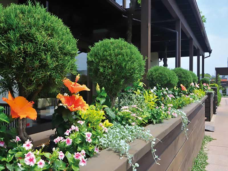 鴻巣霊園 園内に彩を添えている花たち
