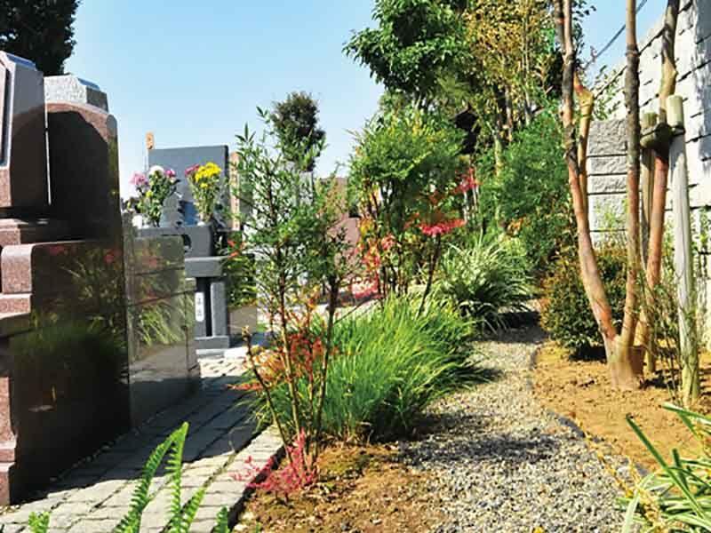 久喜聖地公苑 墓域の周りの木々
