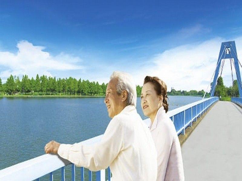 水元公園ともしびの郷 樹木葬 隣接する水元大橋と公園の自然