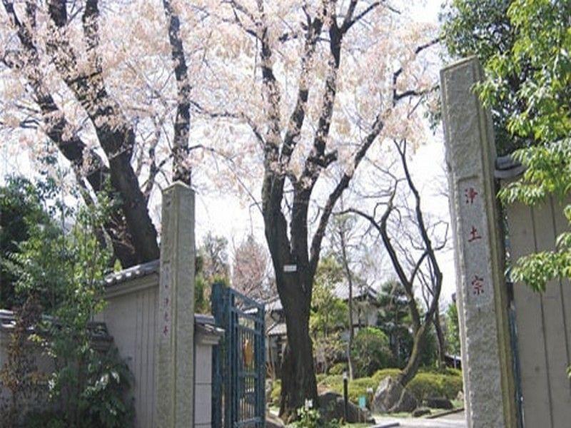 淨光寺(浄光寺)