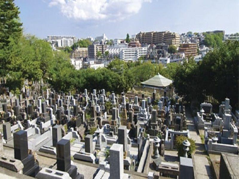 妙秀山 樹源寺 園内全景