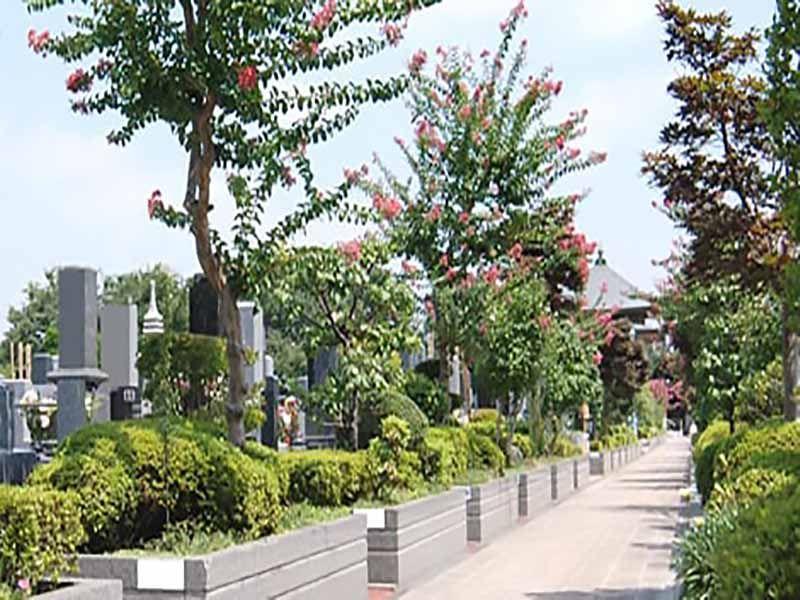 さいたま聖地霊園 植栽が美しい参道