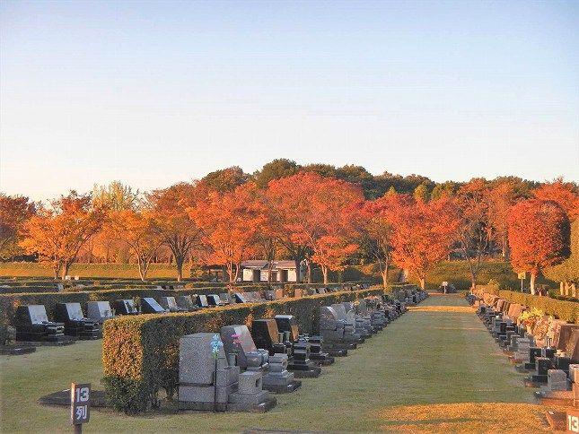 さいたま市営霊園 思い出の里 秋の芝生墓地