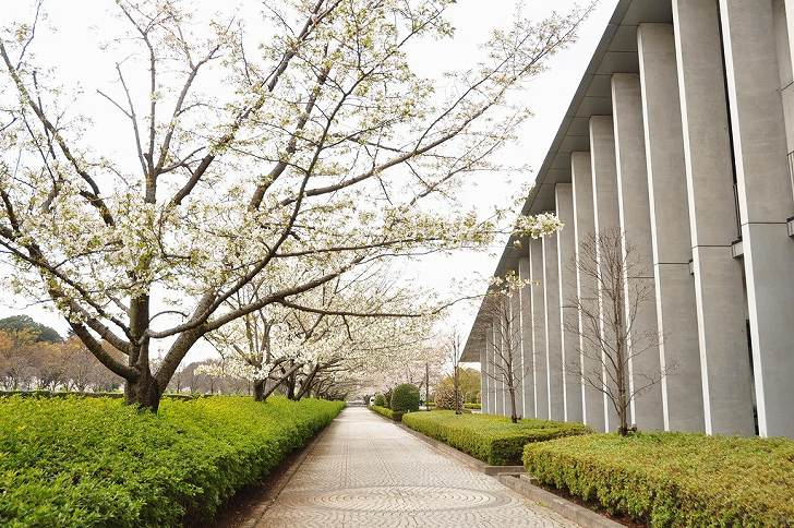 さいたま市営霊園 思い出の里 広く平坦な参道