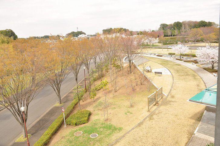 さいたま市営霊園 思い出の里 木立に囲まれた園内