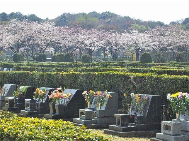 さいたま市営霊園 思い出の里 自然環境に恵まれた墓域