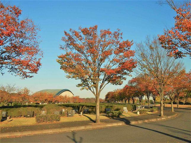 さいたま市営霊園 思い出の里 空が広く開放的な園内