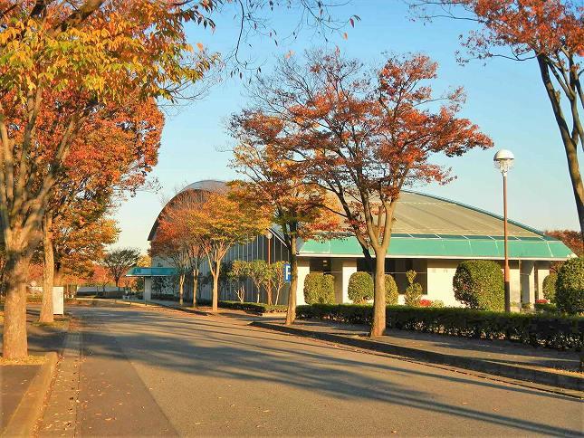 さいたま市営霊園 思い出の里 紅葉も楽しめる園内