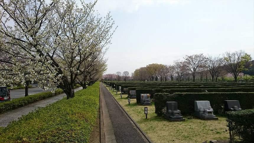 さいたま市営霊園 思い出の里 広大な面積の墓域