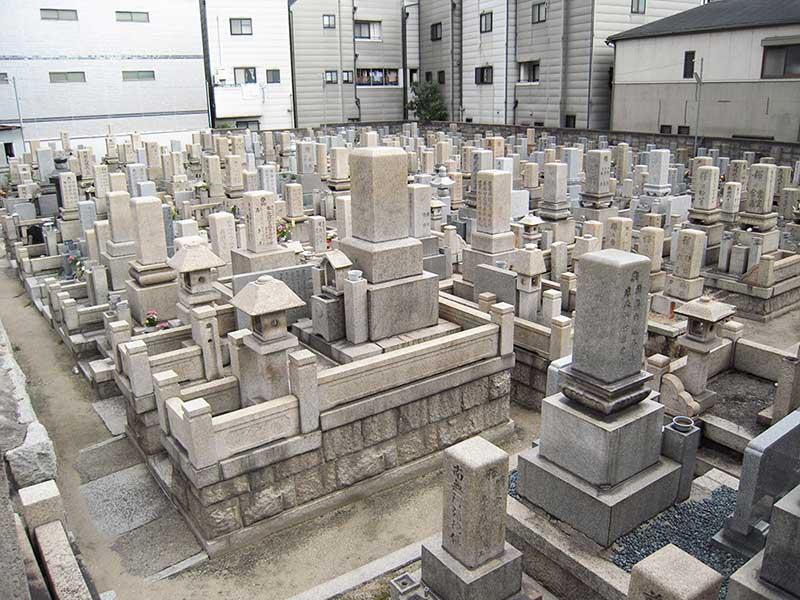 住吉千躰霊園 平坦な参道