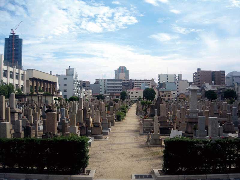 大阪市設 北霊園 日の当たる園内