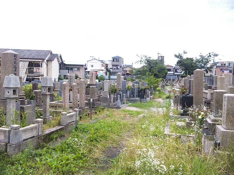 吹田市営 川面墓地 日当たりがよい墓域