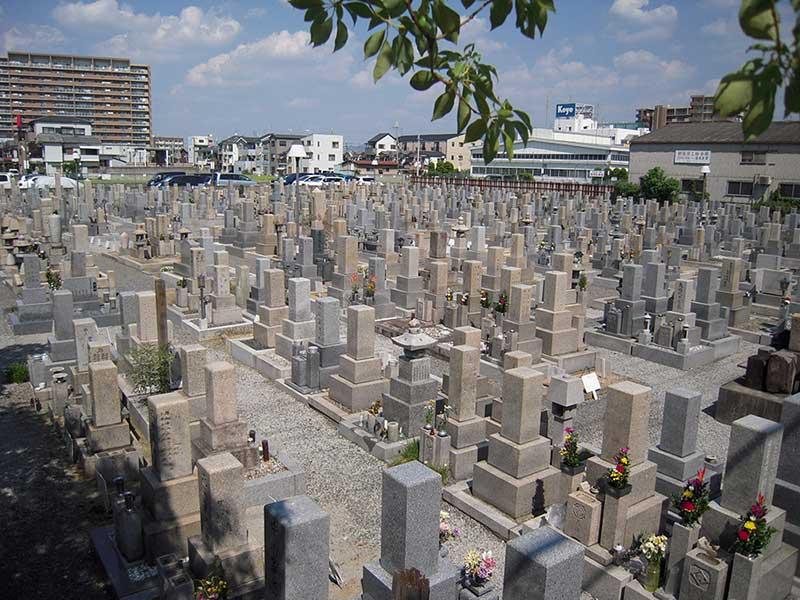 八尾市立 龍華墓地 明るい雰囲気の墓地