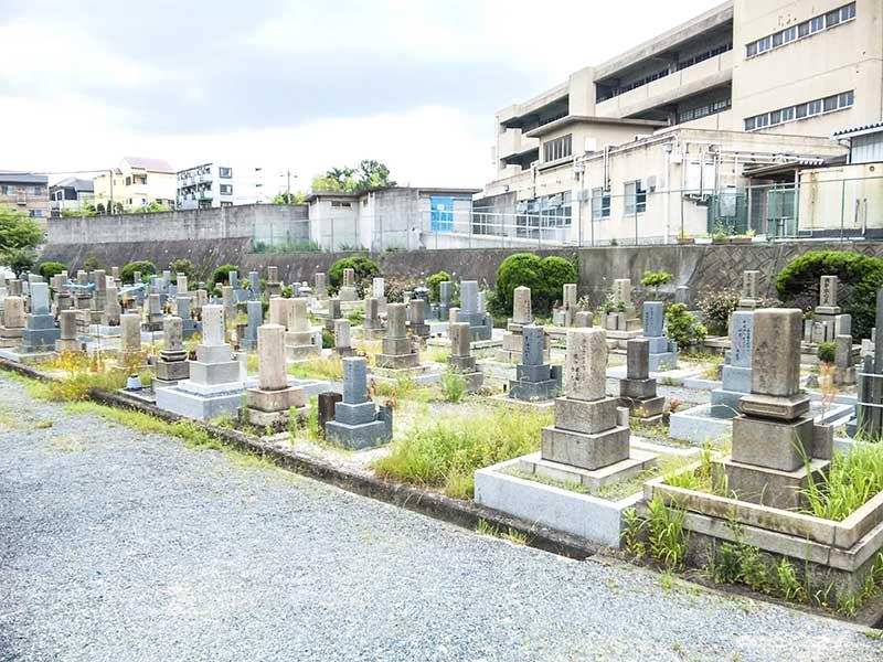 吹田市営 片山墓地 明るい雰囲気の墓域