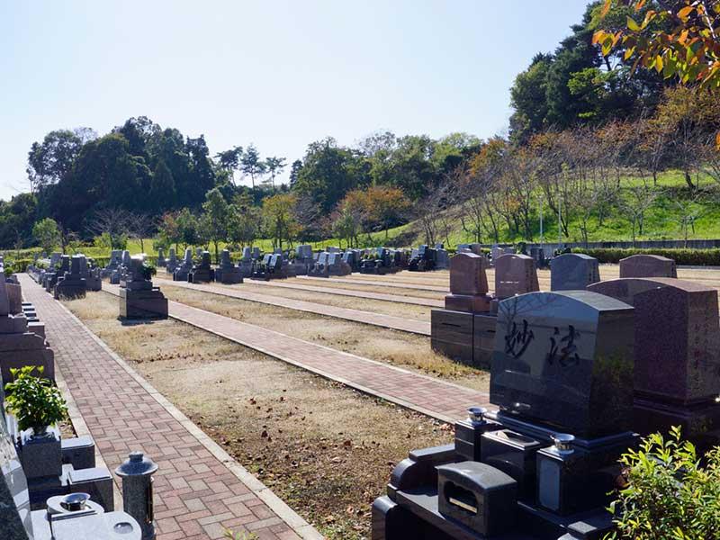京阪奈墓地公園 日の当たる園内